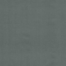 Toile de charnière et dos D43 4310 gris L103
