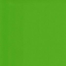 Papier enduit cuir agneau SCALA 20802 vert clair L102