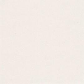 Papier enduit métallisé NORMA 20388 Perle L106