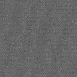 Toile enduite Buckram 503 gris étain L106